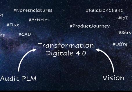 De l'audit à la transformation